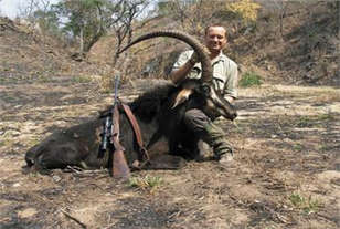 Sable Roger Whittall Safaris